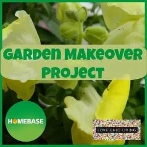 Homebase Garden Makeover Project: The Beginning