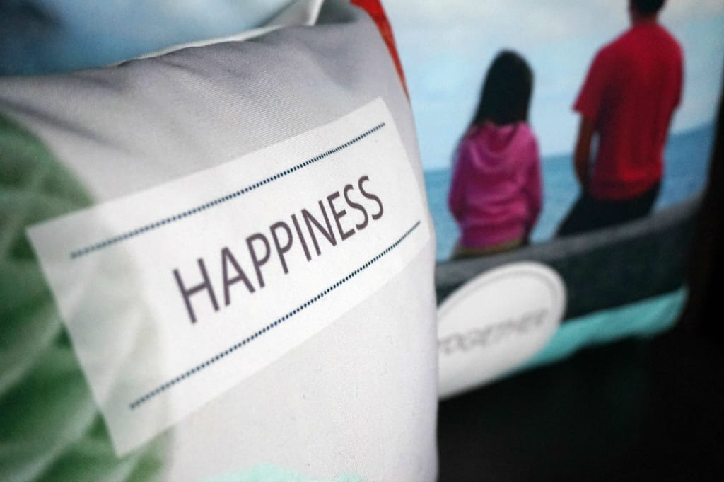 Happiness cushion low res