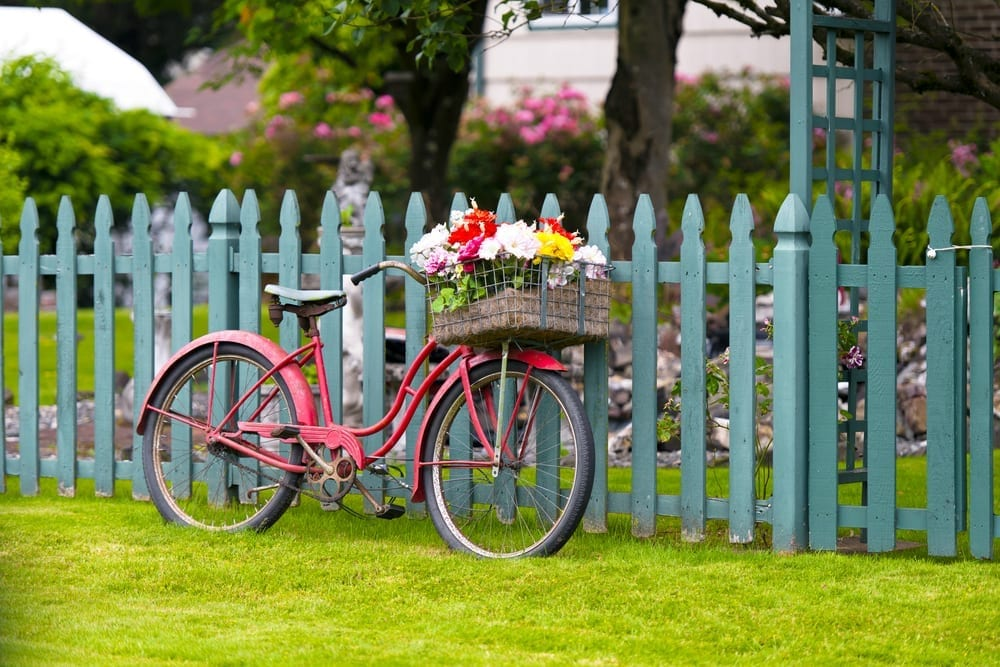 Top tips to prolong your fence