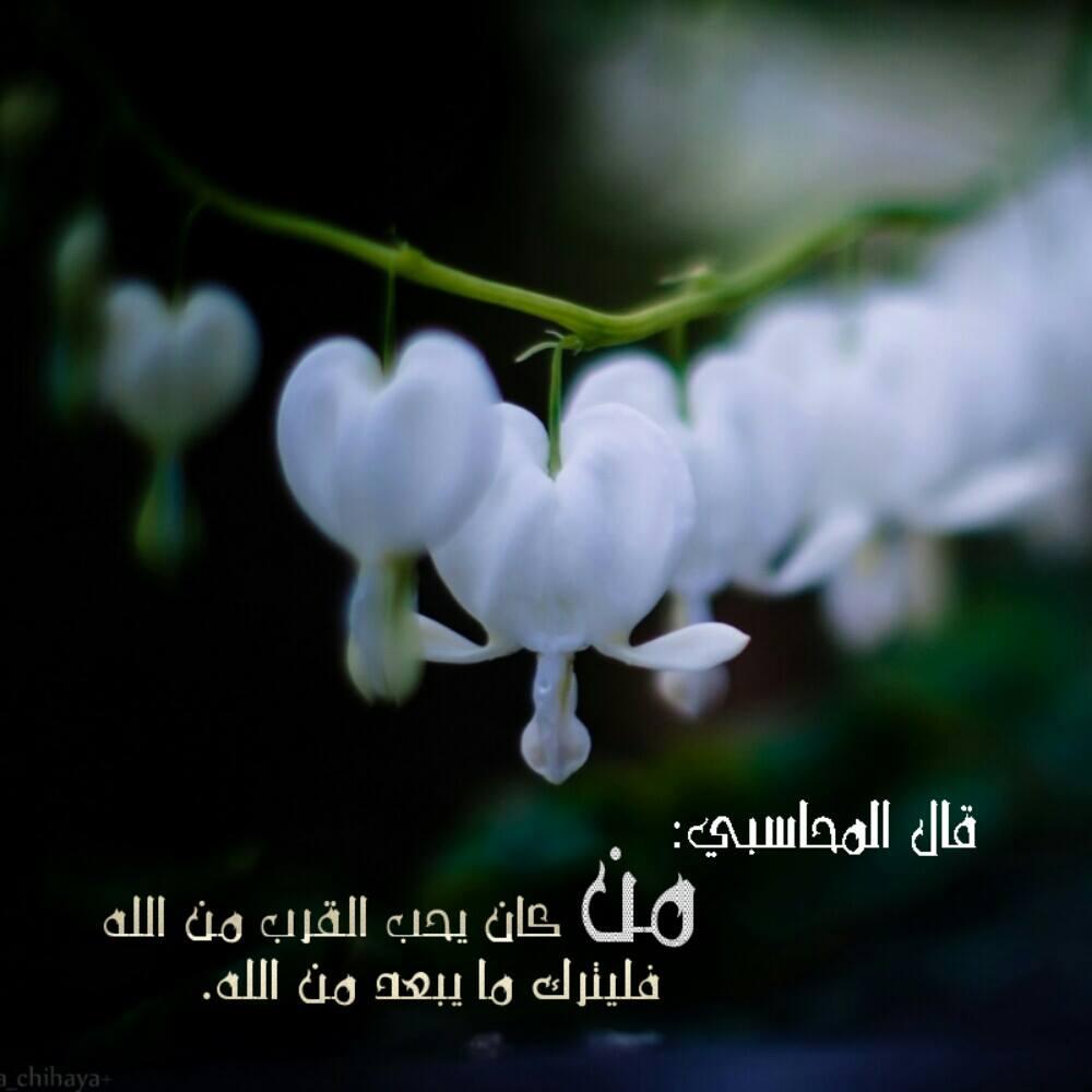 خلفيات دينيه مكتوب عليها عبارات اجمل الكلمات الدينيه احضان الحب