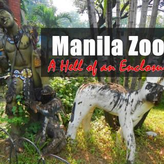 manila zoo animals