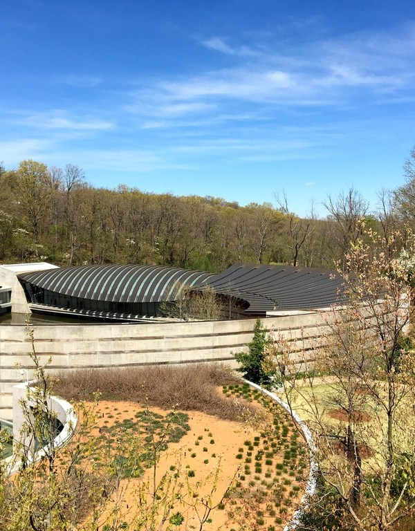DAY TRIP TO CRYSTAL BRIDGES