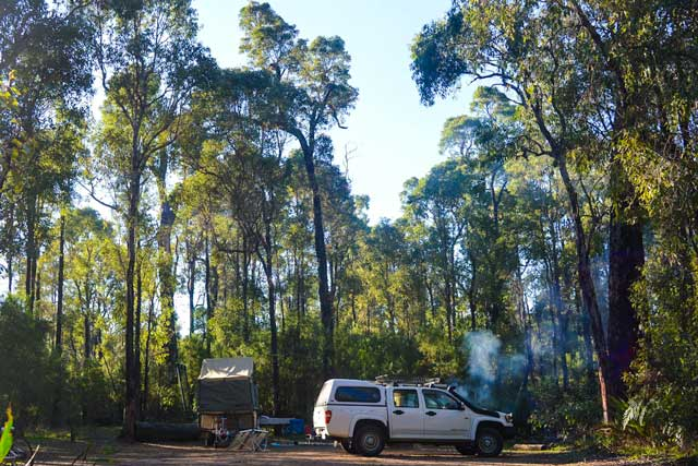 Our camp surrounded by bushland at Wright's Bridge campground.