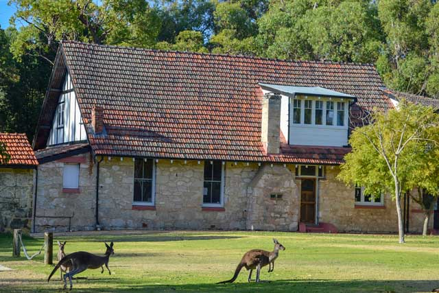 Yanchep Tavern with kangaroos hopping out front