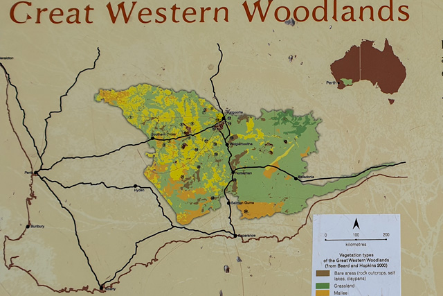 Map of the Great Western Woodlands
