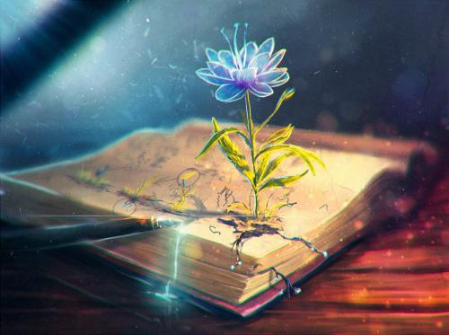 FO17 bible flower