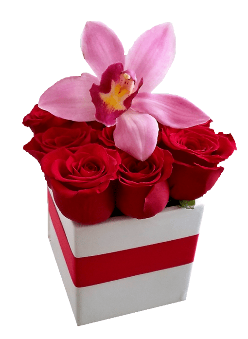 Red Roses Box With An Orchid Love Flowers