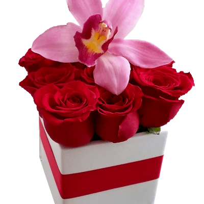Small Flower Box With An Orchid