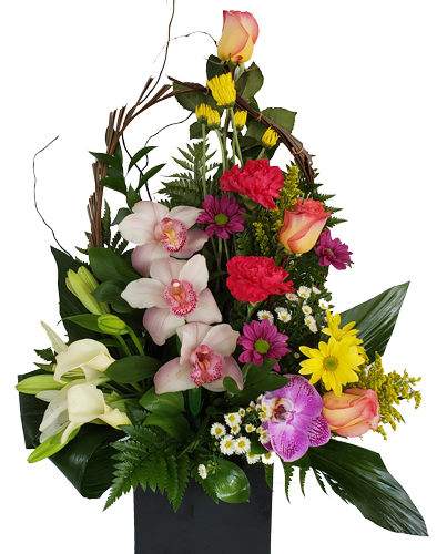 Orchids, CarnatSummer-Paradise Birthday Flowersions, Roses And Margaritas