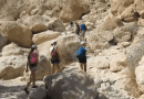 """Walk With Me"" – Steve Martin going to Ein Gedi waterfalls near the Dead Sea (2 of 4)"