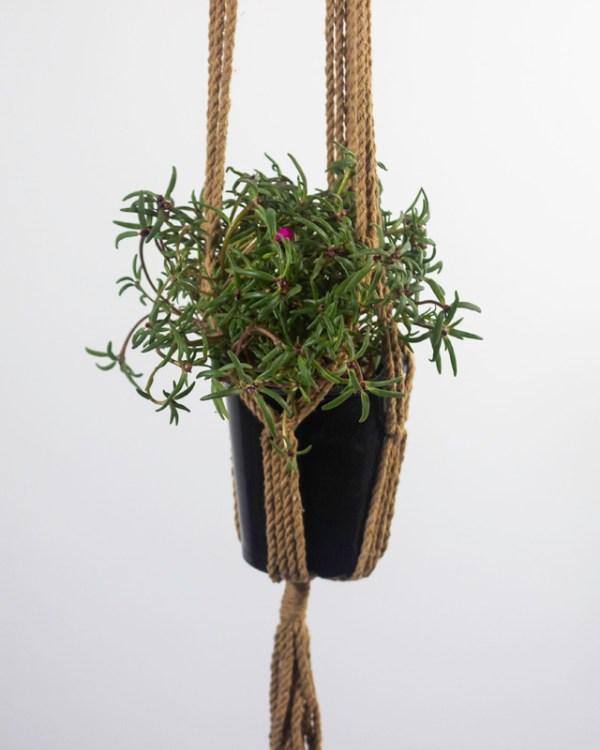 Santana Macrame Plant Holder Khaki Made in Nicaragua