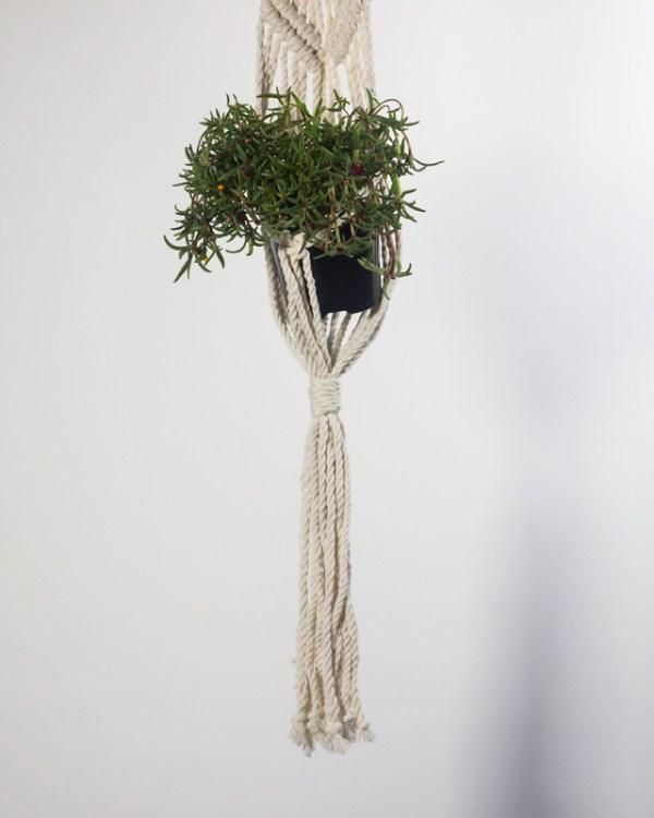 Somoto Macrame Plant Holder Natural White Made in Nicaragua