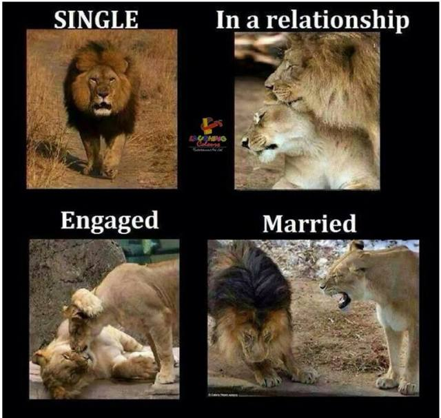From Single to Married..
