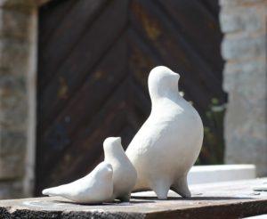 pigeons-836327_960_720