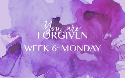 Week 6 – The Fruit of Our Forgiveness: Gratitude