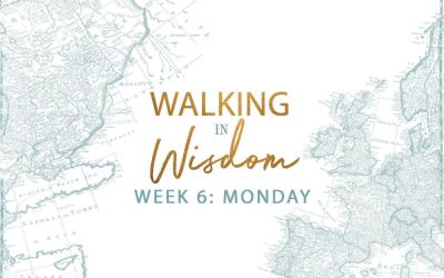 Week 6-The Fruit Of Wisdom