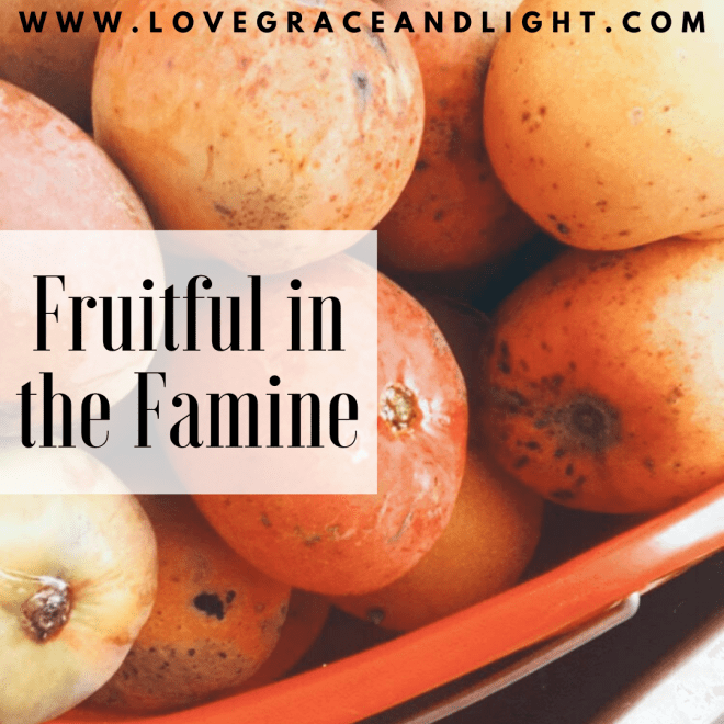 Fruitful In Famine