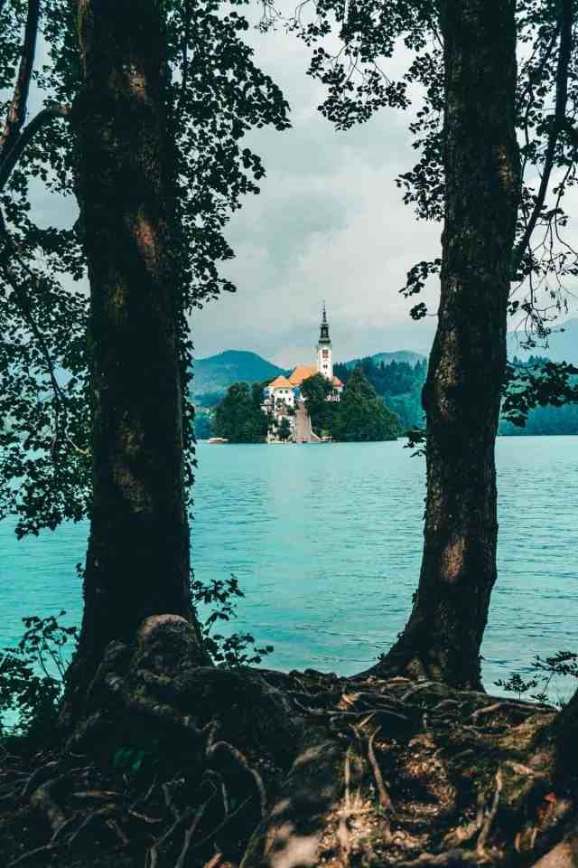 View of Bled Island between the trees