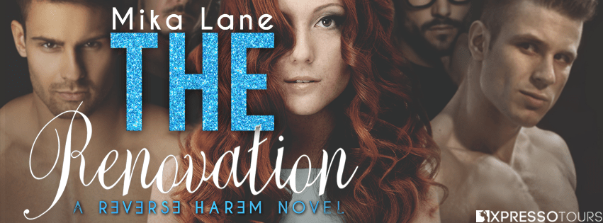 Cover Reveal: The Renovation by Mika Lane