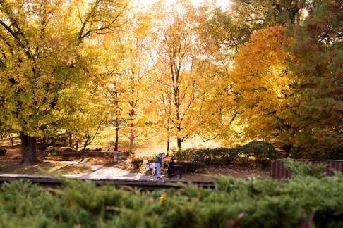 fall-proposal-brent-gumminger-photography-13