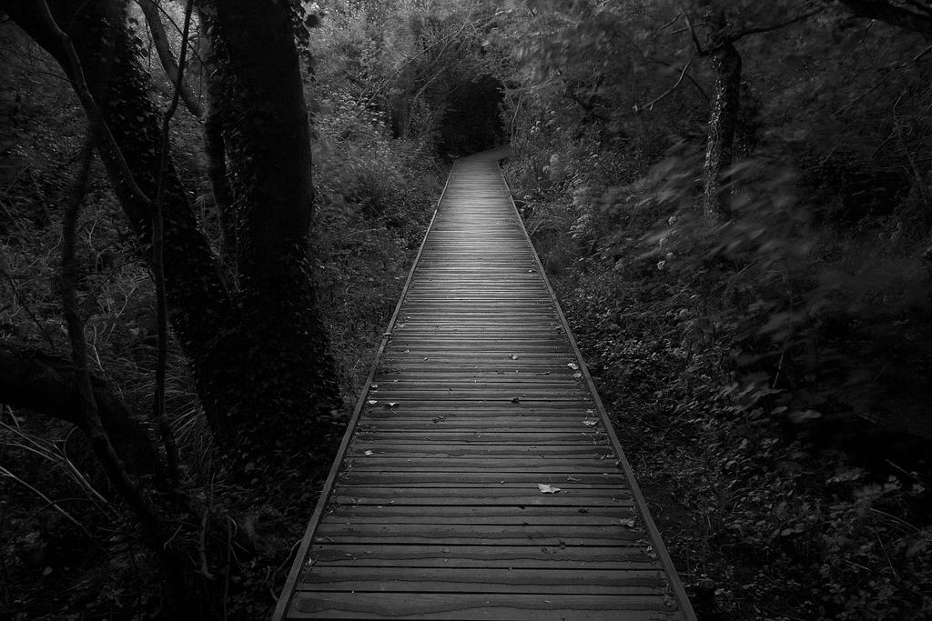 Întâi trebuie să cunoşti întunericul pentru a aprecia lumina