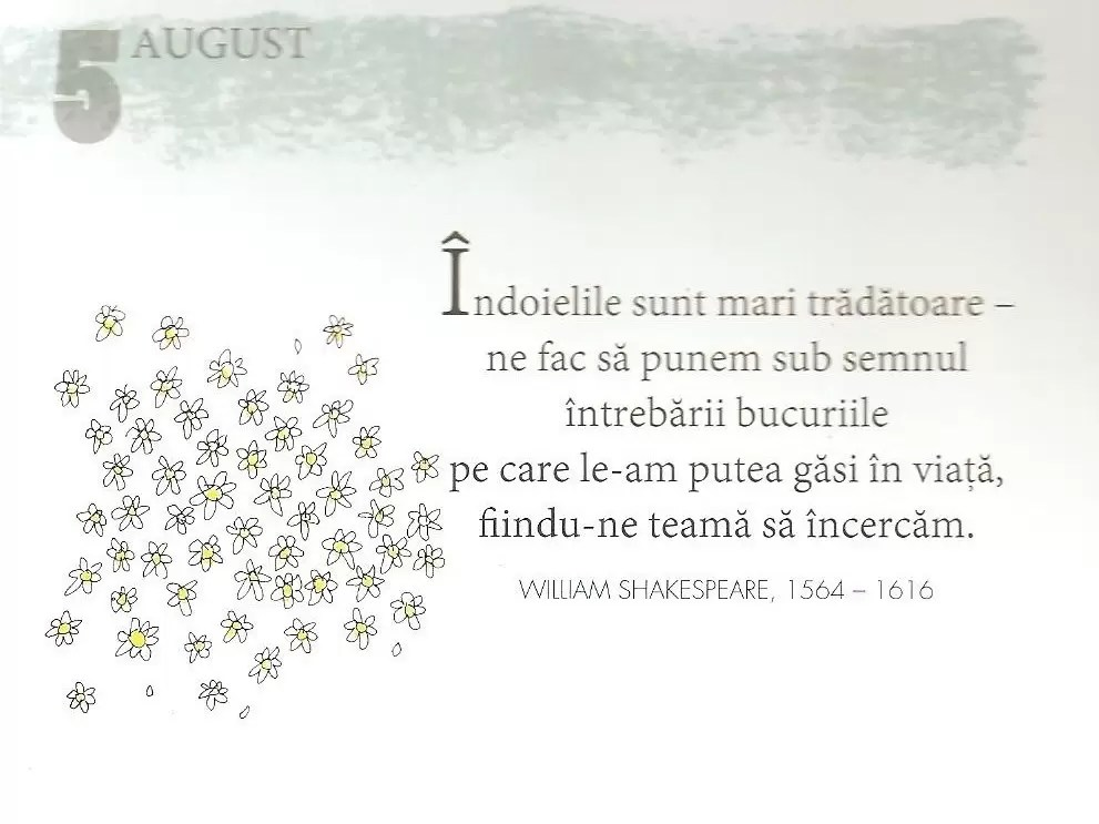 5 August