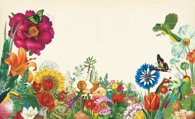 Illustration by Valero Doval