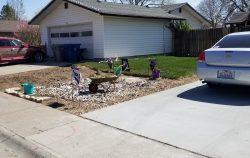 Doris & Cathy's landscaping