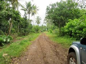 Road to Pandan (12)