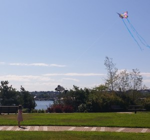 Kite flying on the Sound (2)