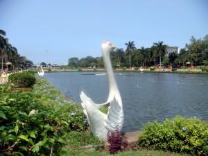 Manila hero park2