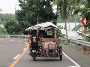 Drive to Samar (1)