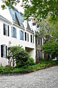 Adventures: Charleston Tours