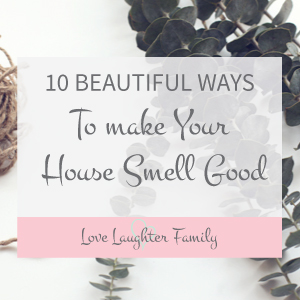 10 ways to make your house smell good all year round. DIY ways to make your house smell good. Smell Hacks for home.