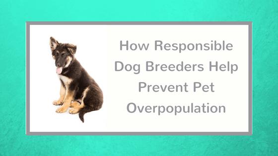 How Responsible Dog Breeders Help Prevent Pet Overpopulation