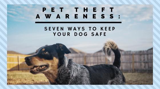 Pet Theft Awareness How to Keep Your Dog Safe