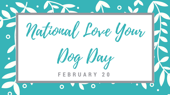 Celebrate National Love Your Pet Day: Share Your Love of Dogs Daily