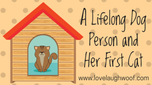 A Lifelong Dog Person and Her First Cat