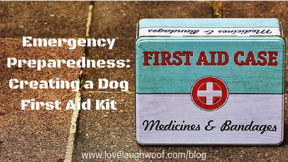 Emergency Preparedness: Creating a Dog First Aid Kit