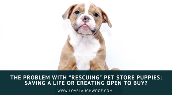 "The Problem with ""Rescuing"" Pet Store Puppies: Saving a Life or Creating Open to Buy?"