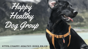 Join the Happy Healthy Dog Group