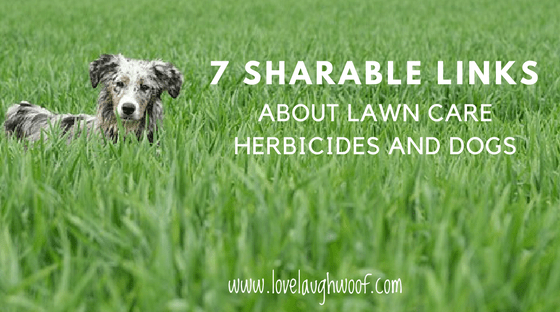 7 shareable links about lawn care herbicides