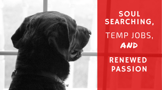 soul searching, temp jobs and renewed passion blog title