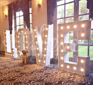 Our 4ft illuminated LOVE & CARIAD letters have over 1.2 million shades and various modes