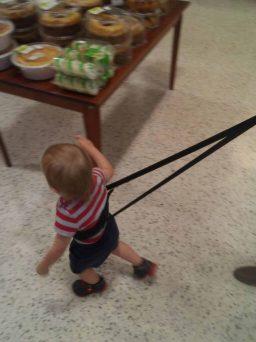 Yochi Yochi baby harness
