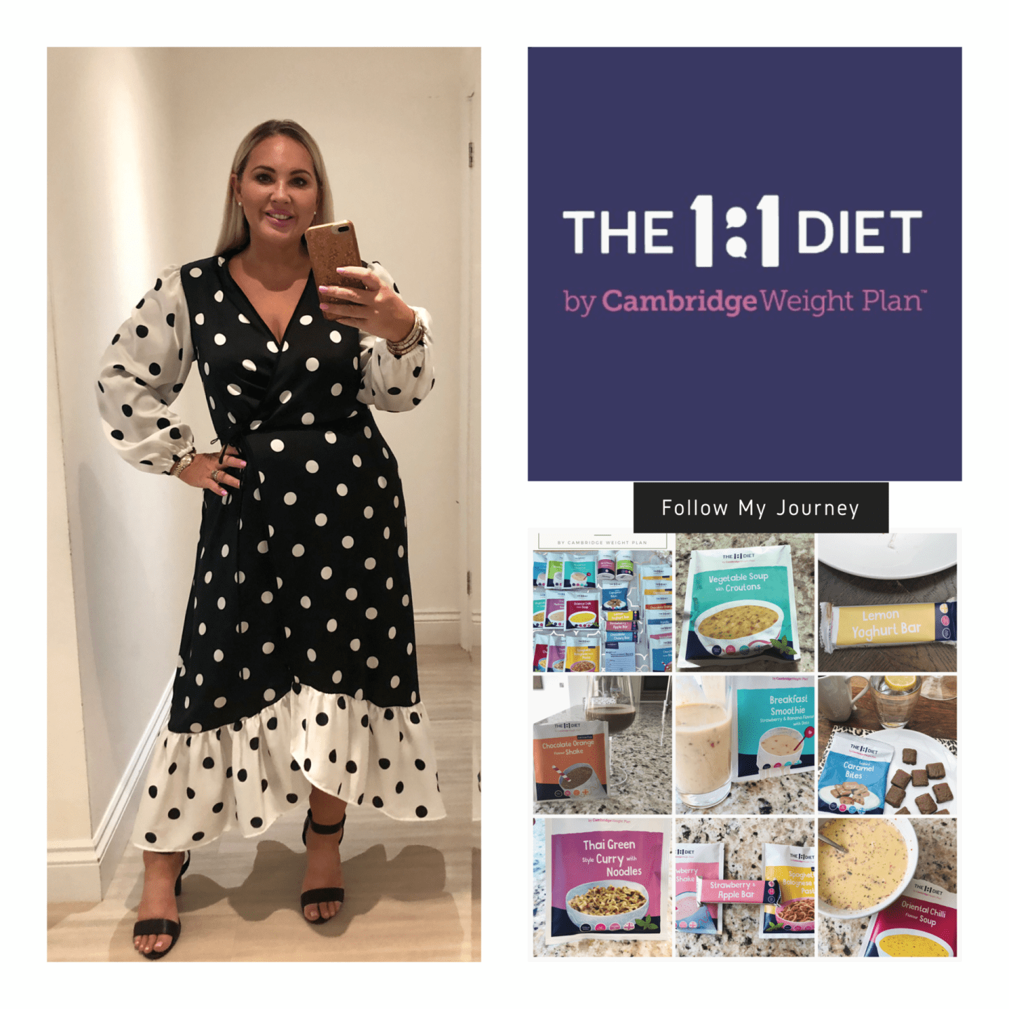 The 1-1 Diet - Week Two