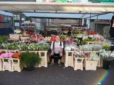 Those Amsterdam flowers