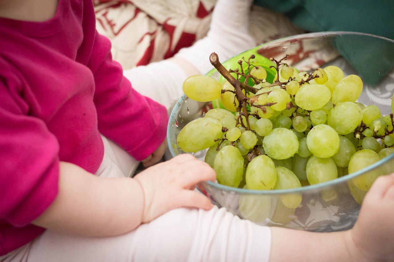 grapes-531207_1280