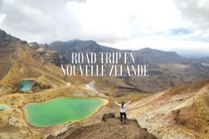 nouvelle-Zélande blog voyage lovelivetravel