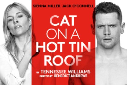 cat-on-a-hot-tin-roof
